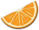 Citrus Slice - Orange
