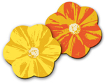 Flowers - Yellow & Orange